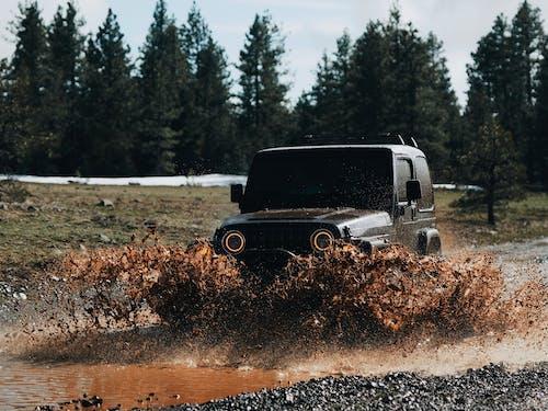 Бесплатное стоковое фото с блестящий, ветровое стекло, вода, водить