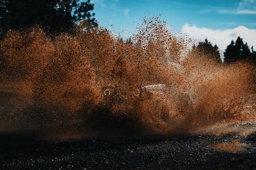 Бесплатное стоковое фото с вода, водить, всплеск, выращивать