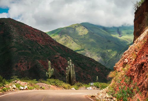 Breathtaking landscape empty roadway located on scenic highlands with red sandstone hills covered with greenery and tall cactuses under cloudy sky