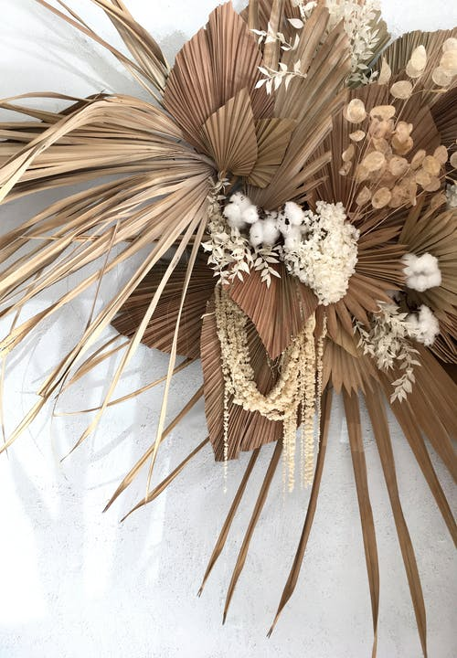 Free stock photo of brown florals, dead flowers, dried floral, dried flower