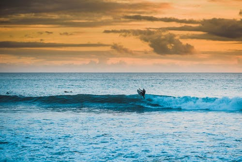Silhouette of unrecognizable surfer riding surfboard on waving sea surface during picturesque sunset in tropical resort