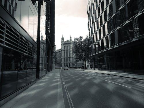 Escala De Grises De Automóviles Y Edificios