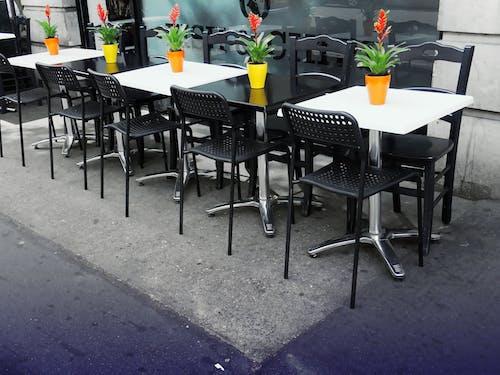 Immagine gratuita di bistro, caffetteria, design, impianti