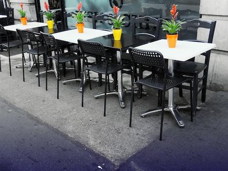 Free stock photo of restaurant, plants, tables, design