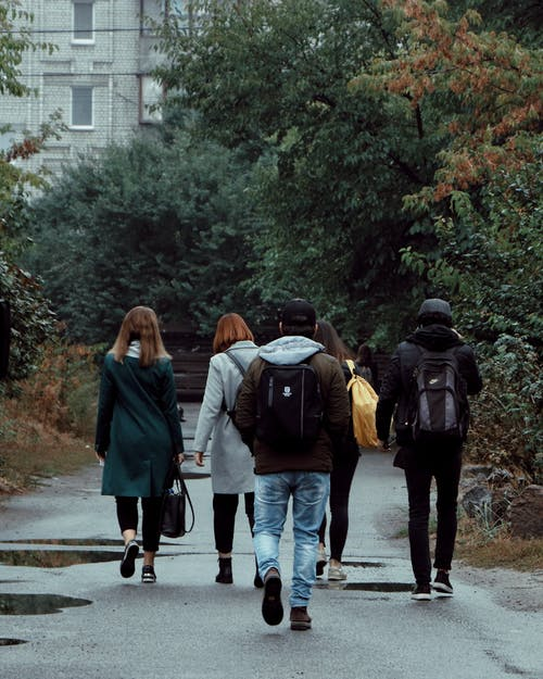 Back view of unrecognizable young friends in warm clothes walking together on path near lush trees in city park