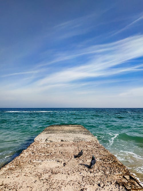 Birds sitting on rough weathered stone pier in rippling sea against picturesque cloudy blue sky on sunny day