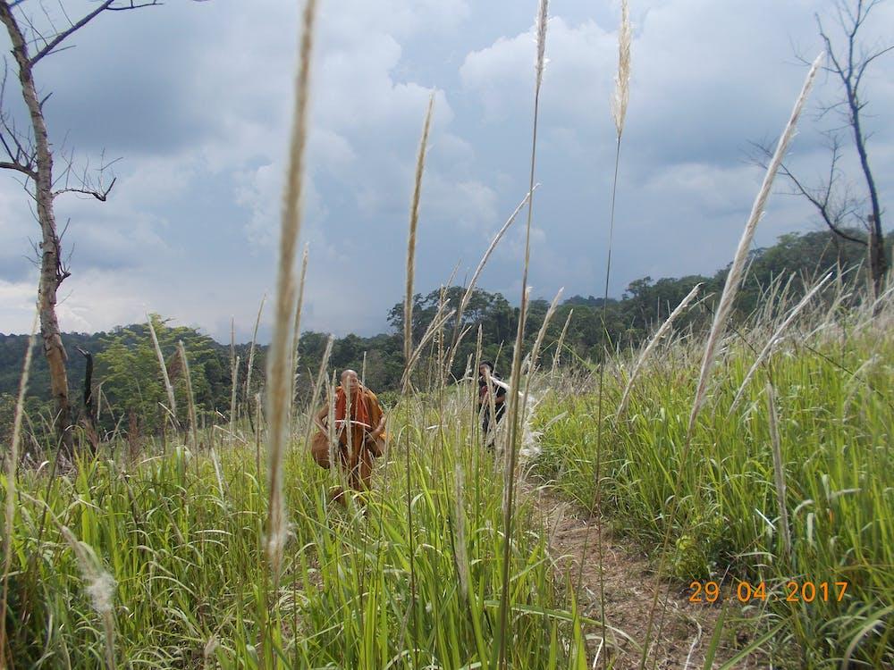 Free stock photo of advanture, clear sky, monk