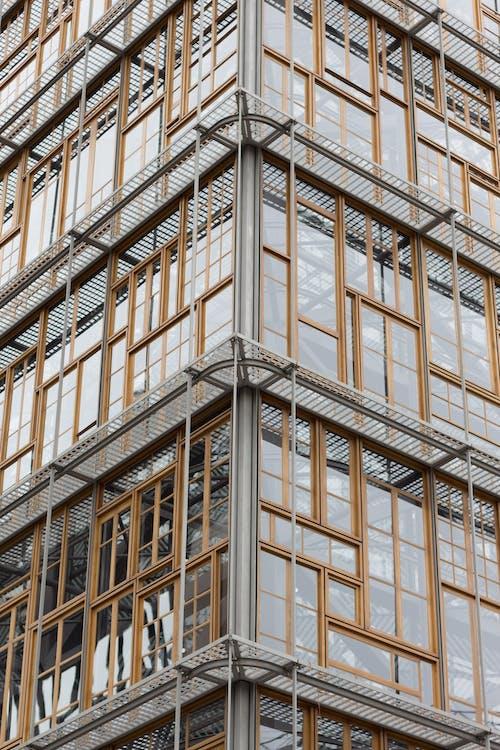 Foto profissional grátis de bruxelas, construção, exterior do edifício, ferro