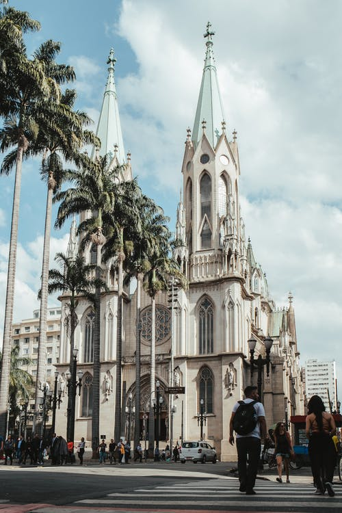 Gothic church with palm trees in sunlight