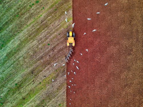 Fotos de stock gratuitas de abstracto, aéreo, agrícola, agricultura