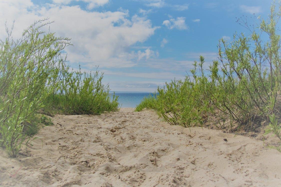 sahilde