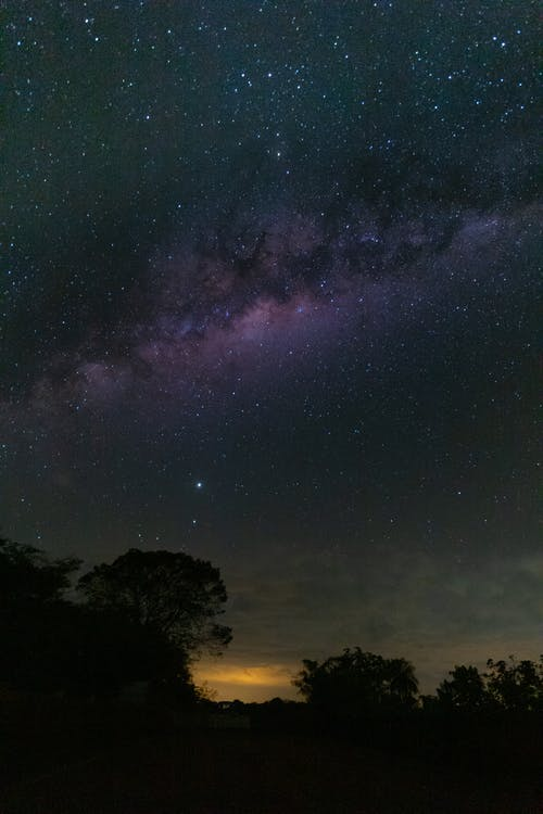 Amazing view of Milky Way on dark sky with stars over silhouette forest trees