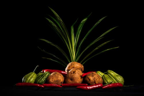 Traditional Mexican veggies arranged with potatoes and tropical plant