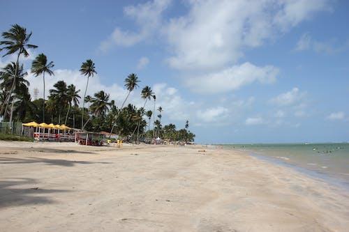 Free stock photo of peroba beach