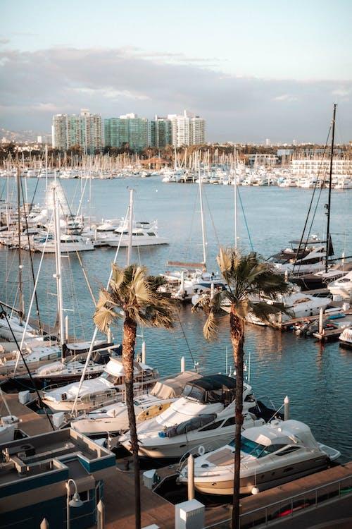 Gratis stockfoto met baai, boot, boten, buiten