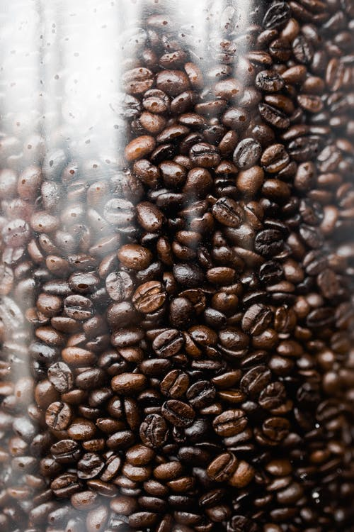 Coffee Beans on Clear Plastic Container