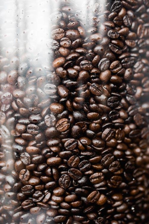 Ilmainen kuvapankkikuva tunnisteilla juoma, kahvi, kahvipavut, kiiltävä