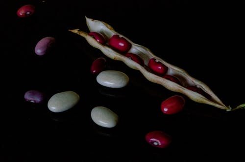 Free stock photo of bean, beans, brown, exotic