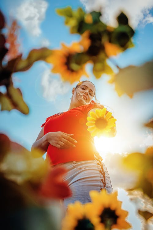 Young woman standing among sunflowers in sunny day