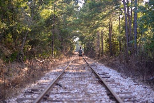 Free stock photo of beautiful landscape, journey, railway line
