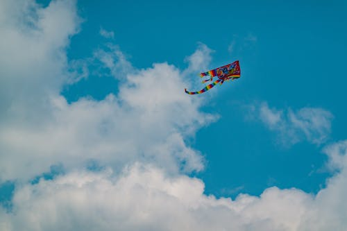 From below scenery of multicolored bright kite soaring in peaceful blue sky