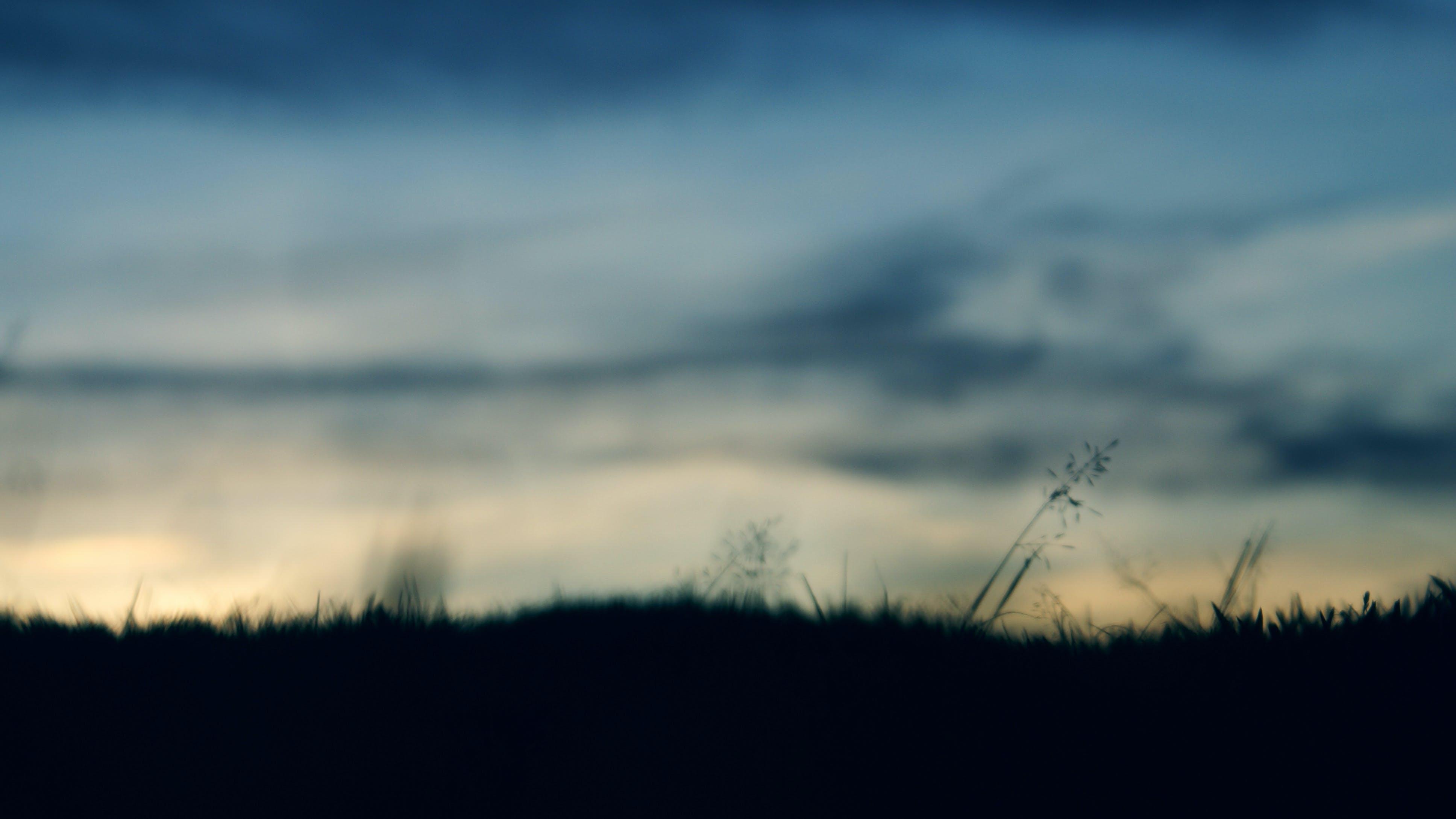 Základová fotografie zdarma na téma krajina, lehký, malebný, mlha