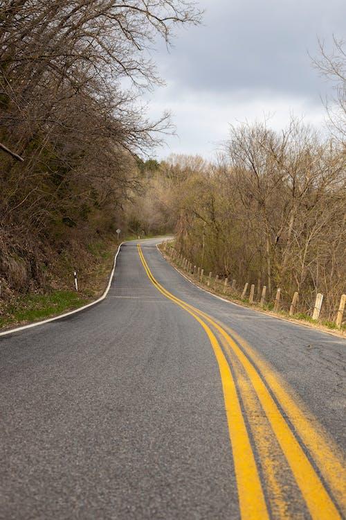 Darmowe zdjęcie z galerii z asfalt, autostrada, bezlistny, cichy