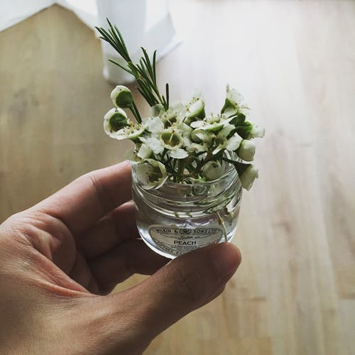 From above crop anonymous person with small jar of white fragrant flowers in light sunny room