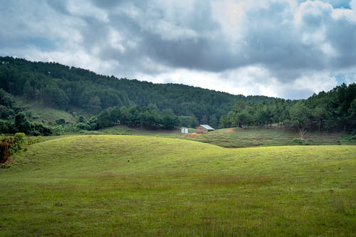 Green meadow in countryside on cloudy day