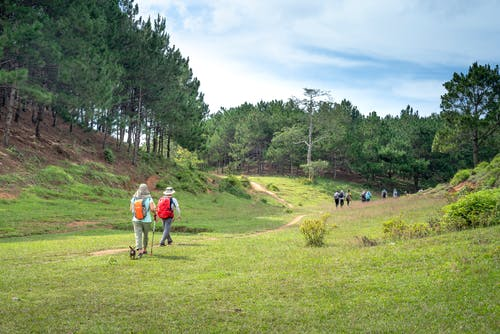 Back view of unrecognizable tourists walking together along path between hills covered with forest on sunny summer day