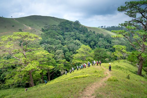 Unrecognizable travelers hiking on path in hilly terrain with forest between hills against cloudy sky on sunny summer day
