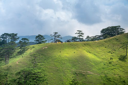 Green meadow on slope of mountain in highland