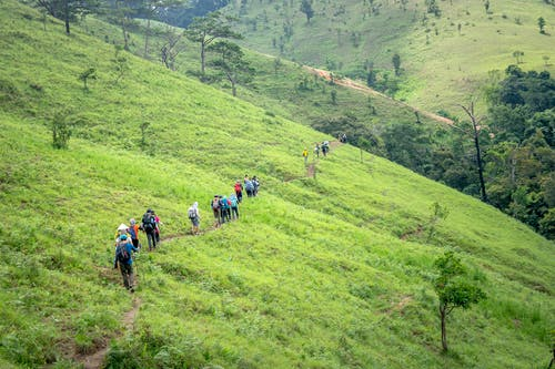 Group of tourists crossing green meadow in hillside