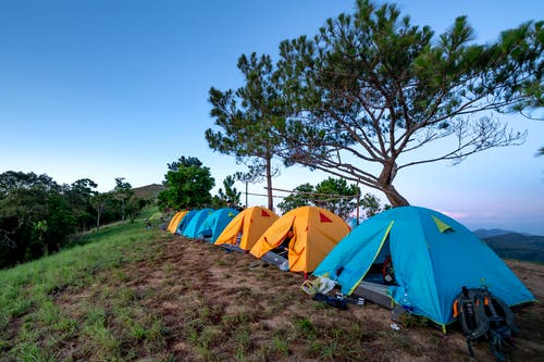 Blue and yellow camping tents located on ground near evergreen trees in mountainous terrain against cloudless sunset sky