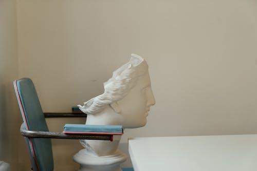 Základová fotografie zdarma na téma busta hlavy, hlava, hrnec