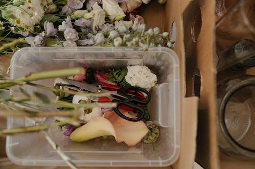 Sliced Vegetables in Brown Cardboard Box