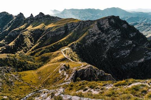 Gratis stockfoto met atmosferisch, berg, bergbos, bergen