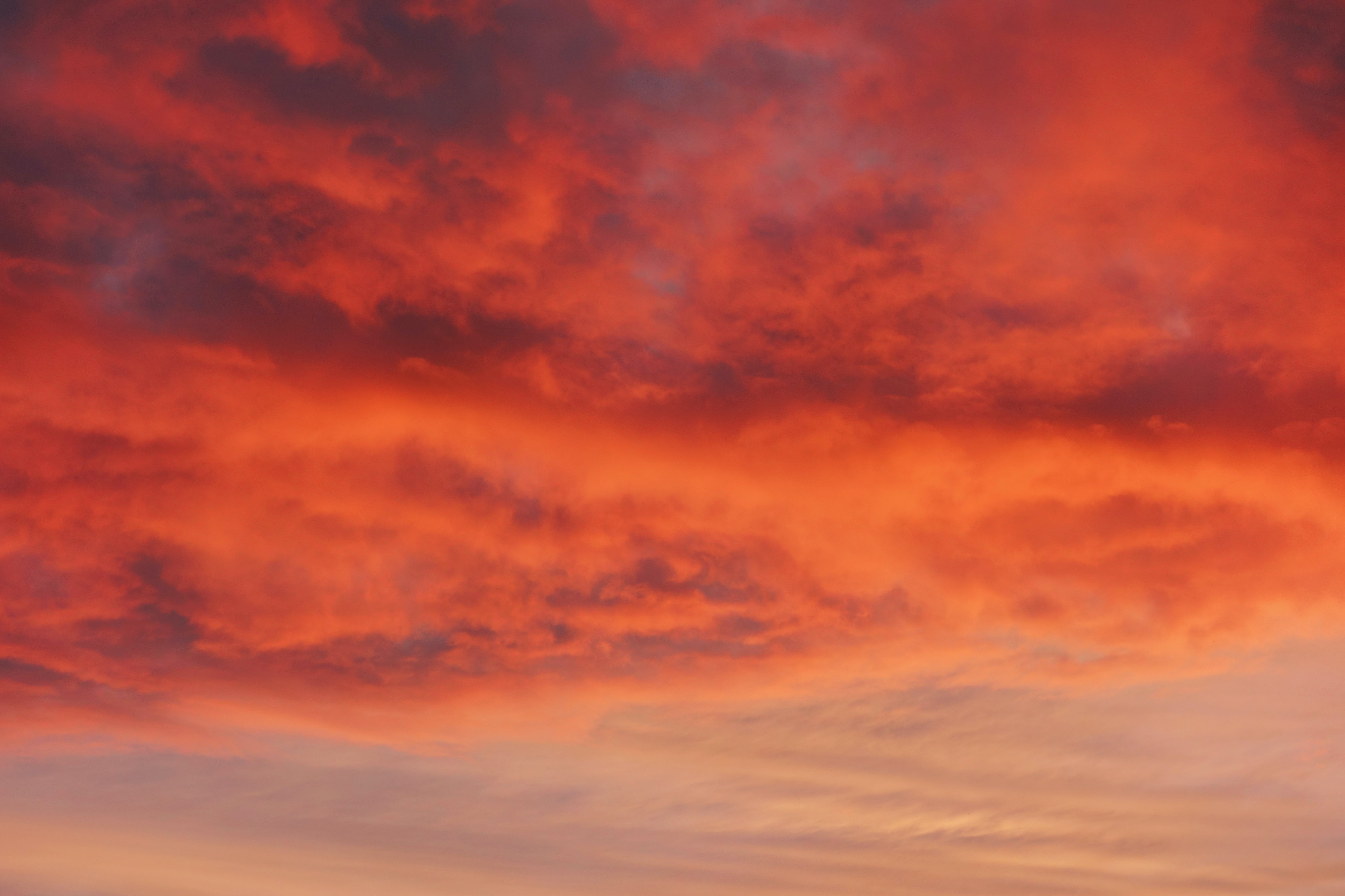 Free stock photo of nature, sky, red, clouds