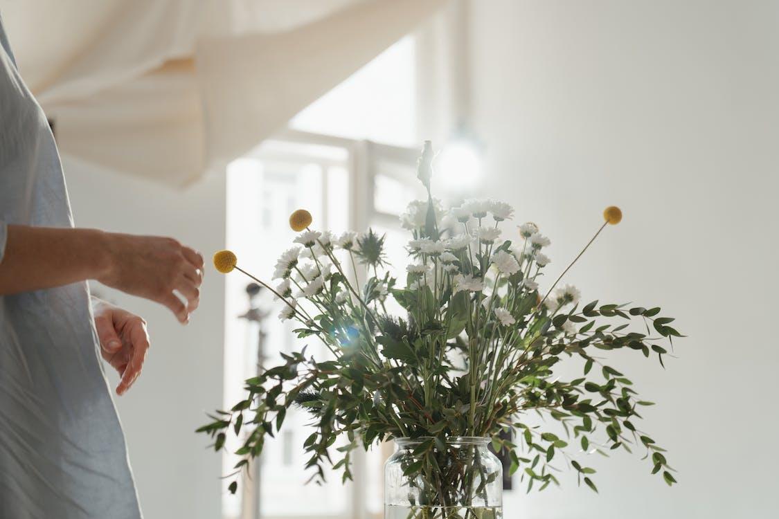 ガラス瓶, ガラス花瓶, クラスパペディアの無料の写真素材