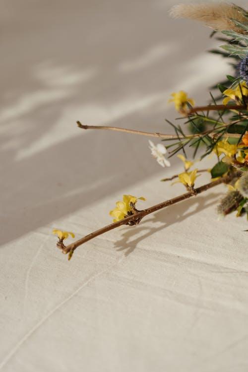 Yellow Flowers on White Textile