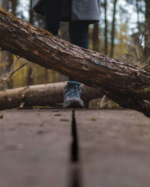 Person Stepping Over Wooden Log
