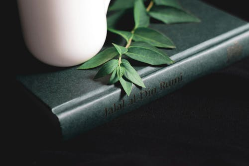 Composition of teapot and plant twig on book