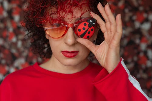 Woman in Red Crew Neck Shirt Holding Red and Black Ladybug Toy