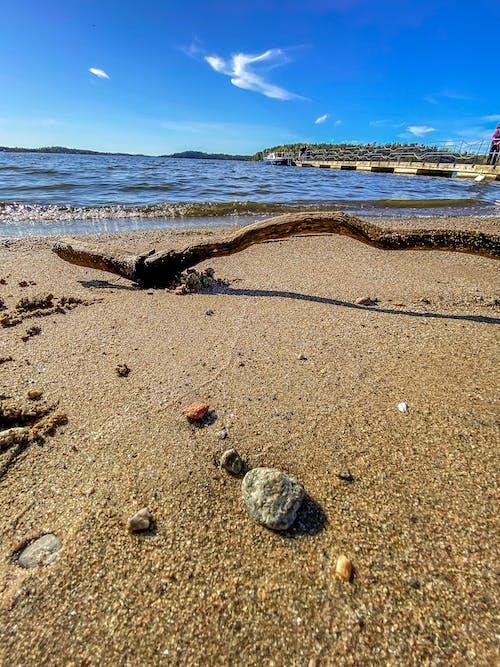 Foto stok gratis danau, musim semi, pantai, stockholm