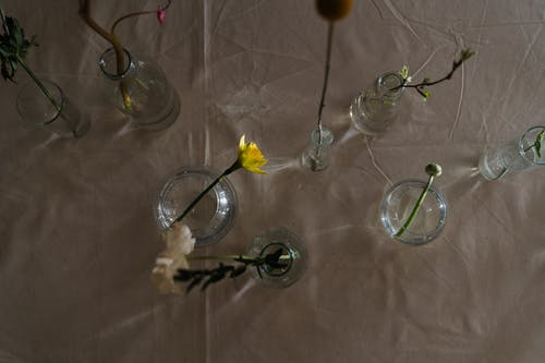 Top View Photo of Flowers on Glass Vase
