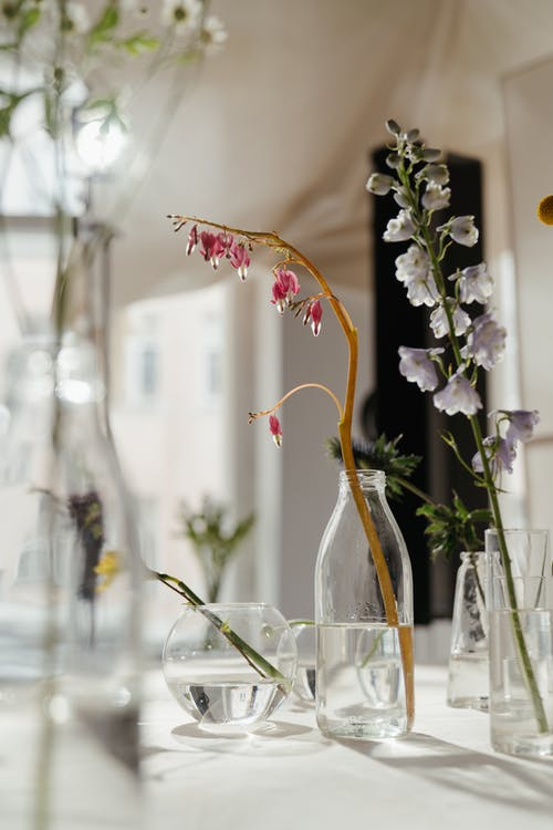 Photo of Flowers in Clear Glass Vase With Water