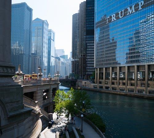 シカゴ, トウモロコシの穂軸, 人, 切り札の無料の写真素材