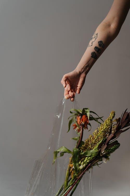 Imagine de stoc gratuită din artă, buchet, buchet de flori