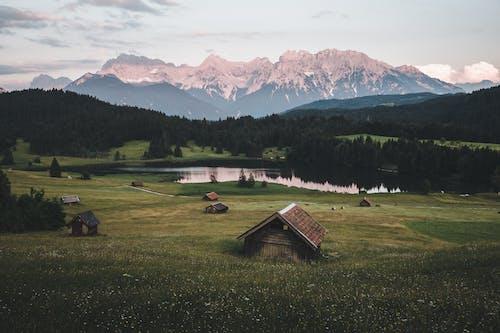 Ảnh lưu trữ miễn phí về alp, alps, bình minh, buổi sáng