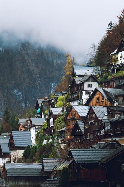 Ảnh lưu trữ miễn phí về alp, alps, Áo, buổi sáng sương mù